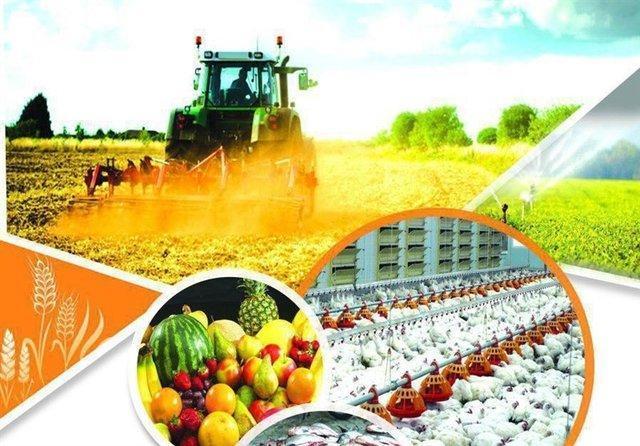 تراز کشاورزی همچنان مثبت تر از پارسال