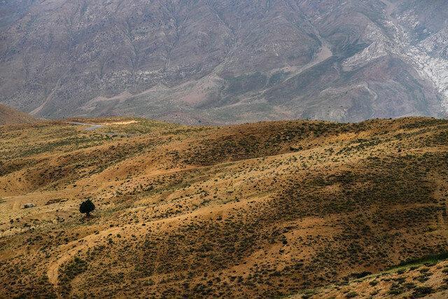 تجلی هنر الهی در طبیعت زیبای قزوین