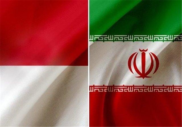 هیات پارلمانی از ایران به اندونزی می رود
