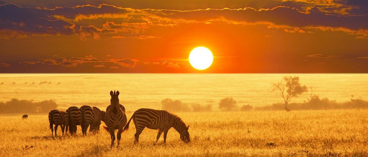 5 دلیل برای سفر به نامیبیا