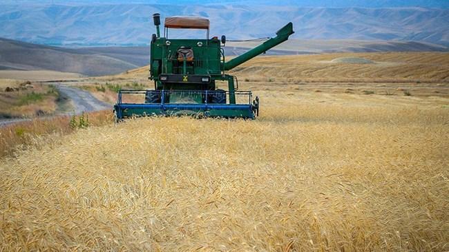 بخش کشاورزی به مدیریت یکپارچه، هوشمند و پایدار نیاز دارد