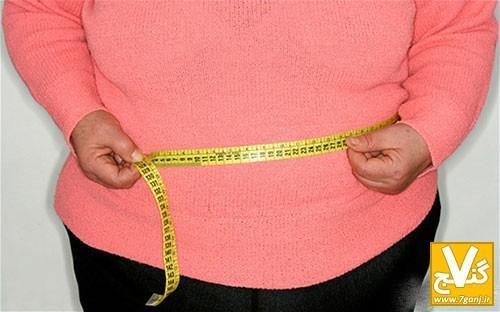 بهترین برنامه غذایی برای افرادی که اضافه وزن دارند