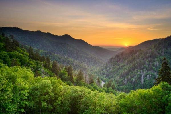سفر به پارک ملی کوه های عظیم اسموکی، آمریکا