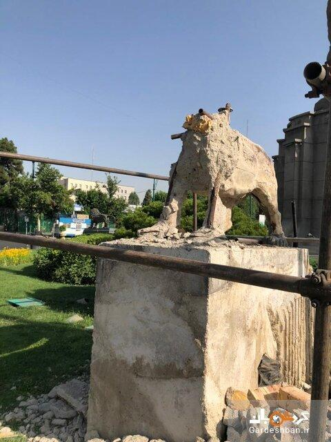 پشت پرده شیرهای خشمگین میدان حُر