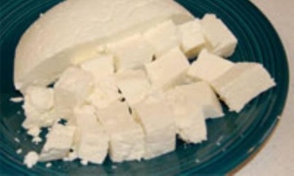 فرایند تهیه پنیر