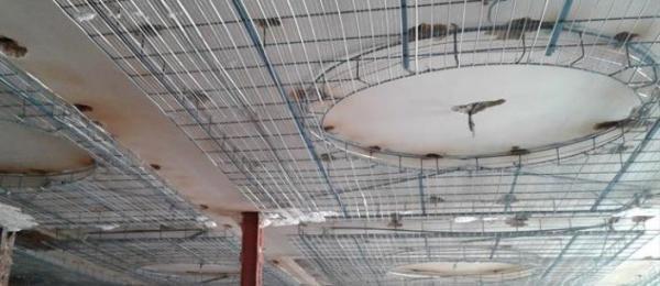 مقاله: آشنایی با کاربرد رابیتس در صنایع ساختمانی